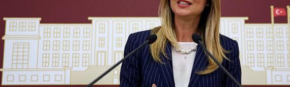 Aylin Nazlıaka: Dershanelerle ilgili tartışmalar yersiz